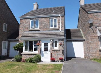 Thumbnail 3 bedroom detached house for sale in Hawkins Walk, Okehampton