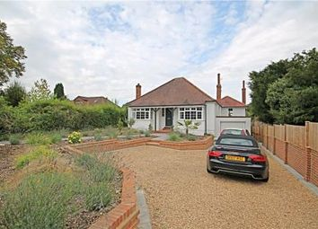 Thumbnail 4 bed detached bungalow to rent in Nork Way, Banstead