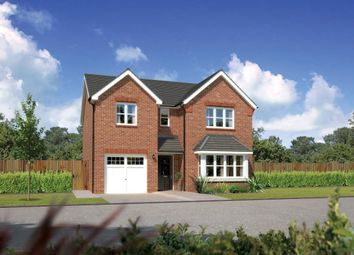 "Thumbnail 4 bed detached house for sale in ""Hampsfield"" at Bolton Road, Adlington, Chorley"