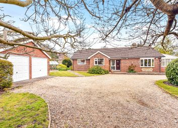 Whyke Road, Chichester, West Sussex PO19. 3 bed bungalow for sale