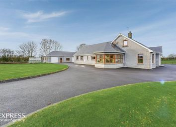 Thumbnail 6 bed detached house for sale in Cloughwater Road, Ballymena, County Antrim