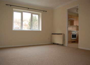 Thumbnail Flat to rent in Butlers Close, St George, Bristol