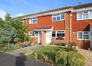 Thumbnail 2 bed terraced house for sale in Silvesters, Harlow