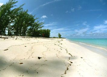 Thumbnail Land for sale in Anguilla Tract, Cat Island, The Bahamas