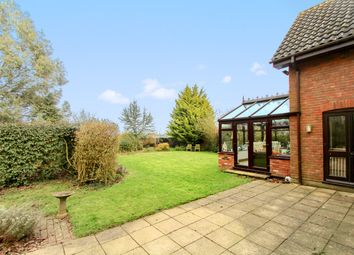 Thumbnail 4 bedroom detached house for sale in Offton Road, Ringshall, Stowmarket
