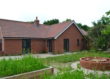 Thumbnail 3 bedroom detached bungalow for sale in School Lane, Redenhall, Harleston
