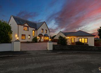 Thumbnail 6 bed detached house for sale in Elidyr Park, Llangwm, Haverfordwest