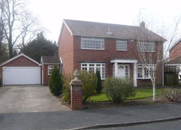 Thumbnail 4 bed detached house to rent in St James Road, Melton