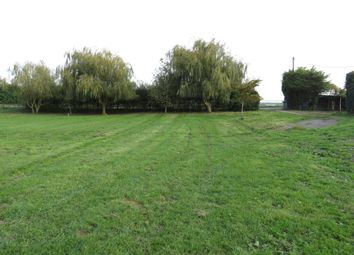 Thumbnail Land for sale in The Drove, Barroway Drove, Downham Market