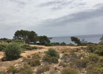 Thumbnail Land for sale in 07639, Cala Pi (Vallgornera), Spain
