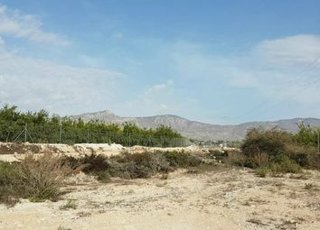 Thumbnail Land for sale in Albatera, Costa Blanca South, Spain