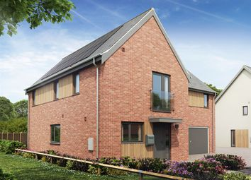 Thumbnail 4 bedroom detached house for sale in Swans Nest, Brandon Road, Swaffham