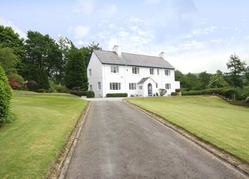 Thumbnail 4 bed detached house for sale in Briery Hill, Langholm, Dumfries And Galloway