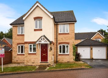 Thumbnail 4 bedroom detached house for sale in Bourchier Avenue, Braintree