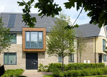 "Thumbnail 4 bedroom property for sale in ""The Vita"" at Mill Road, Mile End, Colchester"