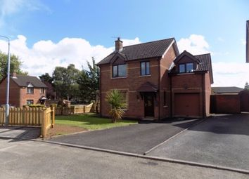 Thumbnail 4 bed detached house to rent in Rosevale Meadows, Lisburn