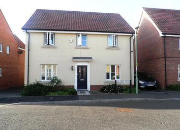 Thumbnail 4 bed detached house to rent in Bramble Walk, Red Lodge, Bury St. Edmunds