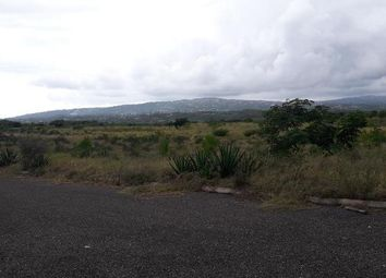 Thumbnail Land for sale in Aligator Pond, Manchester, Jamaica