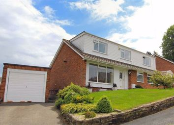 Thumbnail 4 bed detached house for sale in Pistyll, Milwr, Flintshire