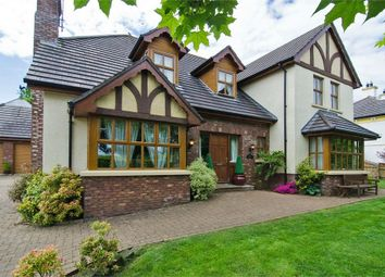 Thumbnail 4 bedroom detached house for sale in Drumavoley Road, Ballycastle, County Antrim