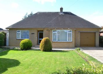 Thumbnail 2 bed detached bungalow for sale in Frondeg, 3, Park Close, Newtown, Powys