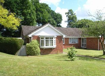 Thumbnail 2 bedroom bungalow to rent in Godden Road, Newick