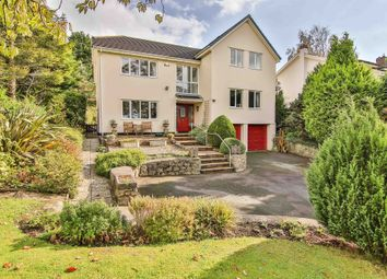 Thumbnail 4 bed detached house for sale in ., Llysworney, Cowbridge