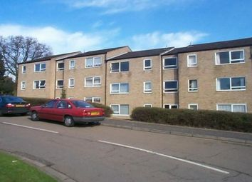 Thumbnail 2 bed flat to rent in Burrows Court, Lumbertubs, Northampton
