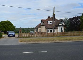 Thumbnail Leisure/hospitality to let in Rembrandt House, Blasford Hill, Little Waltham, Chelmsford