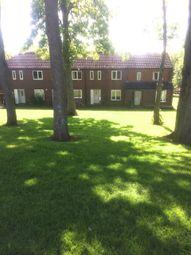 Thumbnail 3 bed terraced house to rent in Hespek Raise, Carlisle