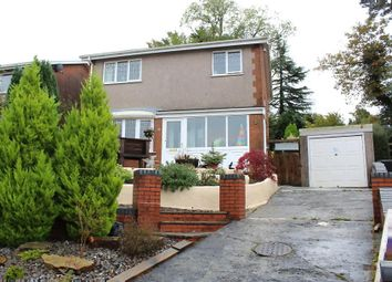Thumbnail 3 bed detached house for sale in Fairoak, Ammanford