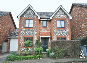 Thumbnail 4 bed detached house for sale in Bunyan Close, Thorpe St. Andrew, Norwich