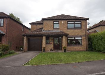 Thumbnail 4 bed detached house for sale in Waun Hir, Efail Isaf, Pontypridd