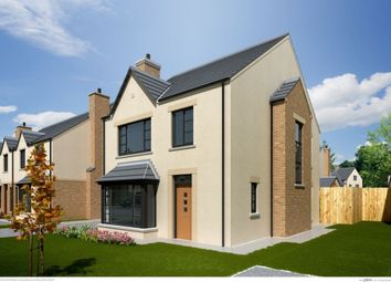 Thumbnail 3 bed detached house for sale in The Bryony, Ferrard Meadow (Final Phase), Antrim