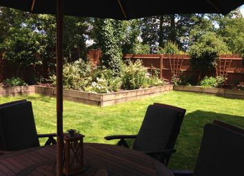 Thumbnail 4 bed semi-detached house to rent in Dene Close, Camberley