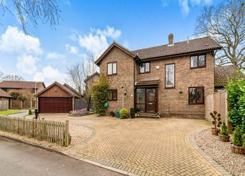 Thumbnail 4 bed detached house to rent in Ramptons Meadow, Tadley
