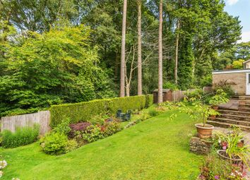 Thumbnail 4 bed detached house for sale in Rozeldene, Hindhead