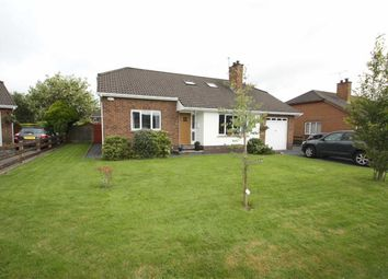 Thumbnail 5 bedroom detached bungalow for sale in Kinedale Park, Ballynahinch