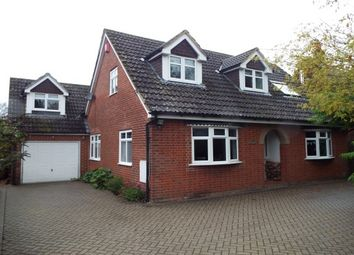 Thumbnail 4 bed property to rent in Stockbridge Road, Timsbury, Romsey