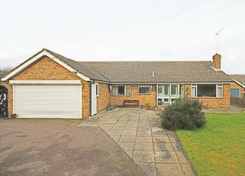 Thumbnail 4 bed detached bungalow for sale in Aythorpe Roding, Dunmow, Essex