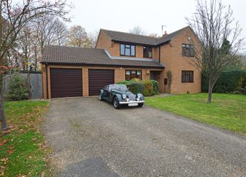 Thumbnail 4 bed detached house for sale in Hall Lane, Werrington, Peterborough