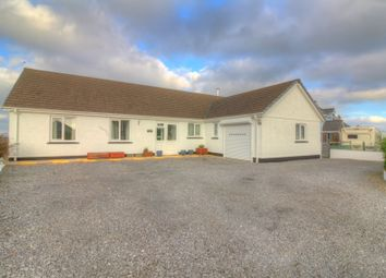 Thumbnail 3 bed bungalow for sale in Tegryn, Llanfyrnach