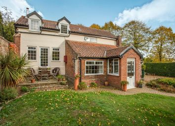 Thumbnail 5 bed detached house for sale in Loddon Road, Broome, Bungay
