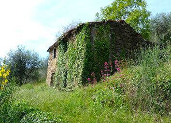 Thumbnail 1 bed detached house for sale in Dolceacqua - Regione Casiglian, Dolceacqua, Imperia, Liguria, Italy