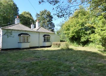 Thumbnail 2 bed bungalow to rent in Mill Street, Polstead, Colchester