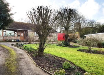 Thumbnail 4 bedroom detached bungalow for sale in Water Lane, Barnham, Thetford