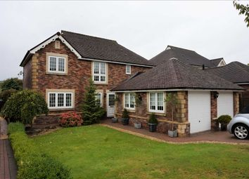 Thumbnail 4 bed detached house for sale in Coed Y Cadno, Cwmgwili, Llanelli