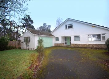 Thumbnail 4 bed detached bungalow for sale in Queenswood Drive, Ferndown