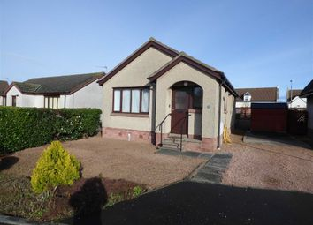 Thumbnail 2 bed bungalow for sale in Milton Court, Pittenweem, Fife