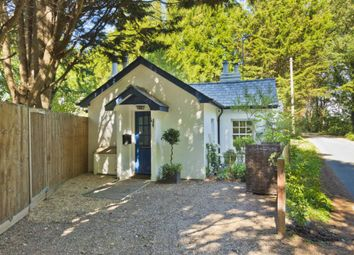 Thumbnail 2 bed bungalow to rent in Old Common Road, Cobham